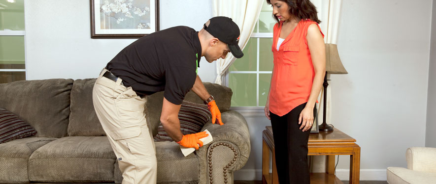Wentzville, MO carpet upholstery cleaning