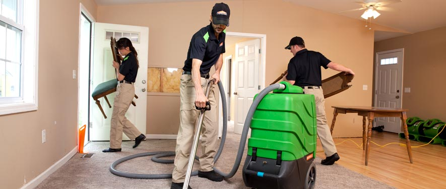 Wentzville, MO cleaning services